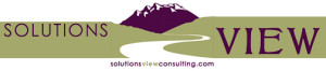 Solutions View Consulting